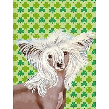 Caroline's Treasures St. Patrick's Day Shamrock House Vertical Flag; Chinese Crested (Brown)
