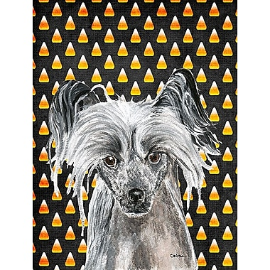 East Urban Home Candy Corn Halloween House Vertical Flag; Chinese Crested (Black)