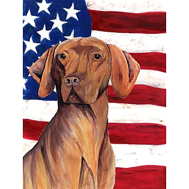 Caroline's Treasures USA American House Vertical Flag; Vizsla 1