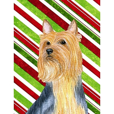 Caroline's Treasures Candy Cane Holiday Christmas House Vertical Flag; Silky Terrier