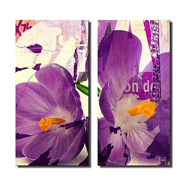 Latitude Run 'Painted Petals C' 2 Piece Graphic Art on Canvas Set