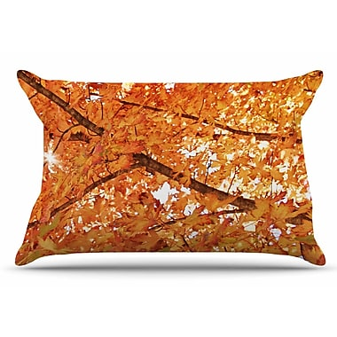 East Urban Home Sylvia Coomes 'Fall Folioge' Pillow Case