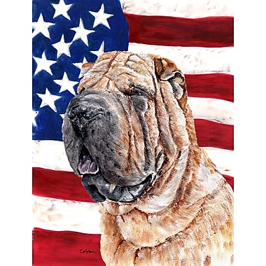 Caroline's Treasures American Flag 2-Sided Garden Flag; Shar Pei Dog