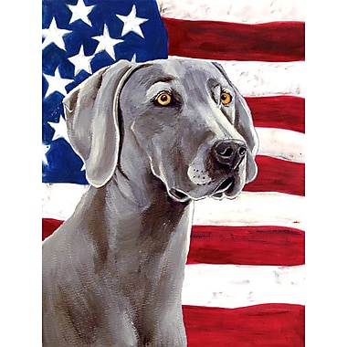 Caroline's Treasures American Flag 2-Sided Garden Flag; Weimaraner 2
