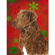 The Holiday Aisle Snowflakes Christmas House Vertical Flag; Chesapeake Bay Retriever