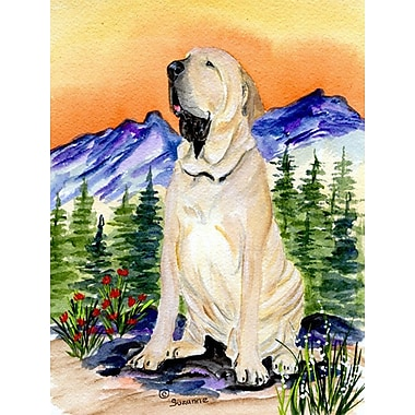 East Urban Home Dog and Mountain 2-Sided Garden Flag; Brazilian Mastiff