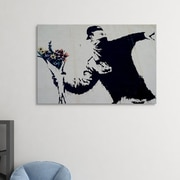 Ivy Bronx 'Flower Thrower' Graphic Art Print on Brushed Aluminum; 11'' H x 14'' W x 1'' D