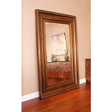 Darby Home Co Rectangle Antique Gold Mirror