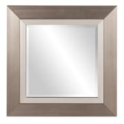Darby Home Co Square Brushed Silver Mirror