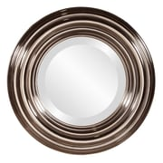 Darby Home Co Round Bright Nickel Resin Mirror