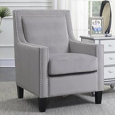 Ivy Bronx Trenton Velvet Arm Chair; Gray