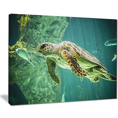 East Urban Home Huge Turtle Swimming Oil Painting Print on Canvas; 20 '' W x 12 '' H