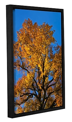 Loon Peak Golden Tree Framed Photographic Print on Wrapped Canvas; 18'' H x 12'' W x 2'' D