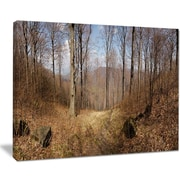 East Urban Home Forest Scenery w/ Bare Trees Oil Painting Print on Canvas; 20 '' W x 12 '' H
