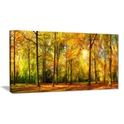 East Urban Home Gorgeous Autumn of Sunny Forest Photographic Print on Canvas; 32 '' W x 16 '' H
