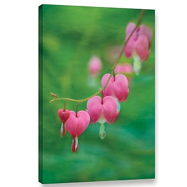 Red Barrel Studio Bleeding Heart Photographic Print on Wrapped Canvas; 48'' H x 32'' W x 2'' D