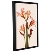 Alcott Hill Lilies Forever 1 Framed Graphic Art; 18'' H x 12'' W x 2'' D
