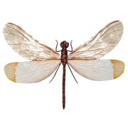 Environmentally Safe at Home Dragonfly Wall Decor