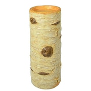 Loon Peak Birch Resin Table Vase
