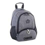 Roots 73 Canada Collection Tablet Mini Backpack With RFID Protection, Grey (RTS3451 005)