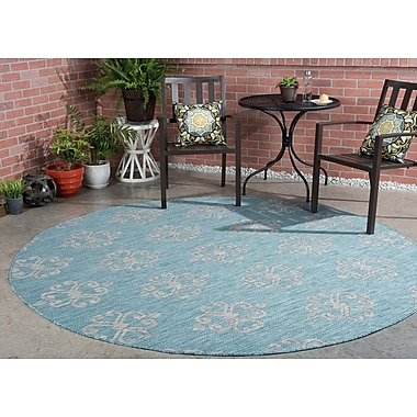 Charlton Home Bella Transitional Aqua Indoor/Outdoor Area Rug; Round 7'10''