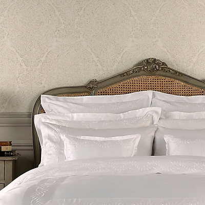 Darby Home Co Batterson Pillow Case; White