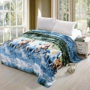 Loon Peak Ambrose Luxurious Oversized Printed Super Soft Plush Flannel Throw