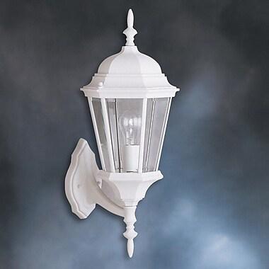 Astoria Grand Allmon 1-Light Outdoor Beveled Glass Shade Wall Lantern; White