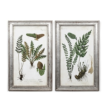 Plants Wall Printing with Frame S/2, 16.5