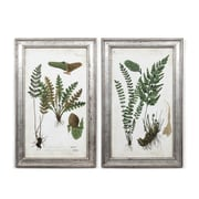 "Plants Wall Printing with Frame S/2, 16.5"" x 1"" x 26.5"" (701B-WX2853-S2)"