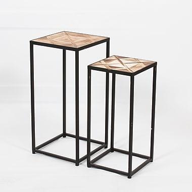 Erna ? Tables gigognes carrées, 2/paquet (7603-WX1928-S2)