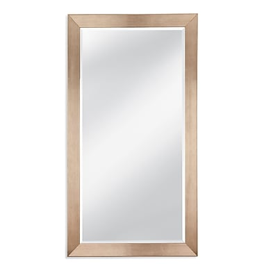 Darby Home Co Silver Leaf Leaner Full Length Mirror