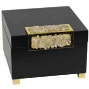 Everly Quinn Black Wood and Glass Decorative Box