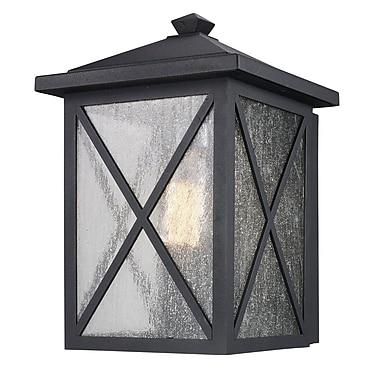 Alcott Hill Erikson 1 Light Outdoor Wall Lantern; 12'' x 8'' x 8''