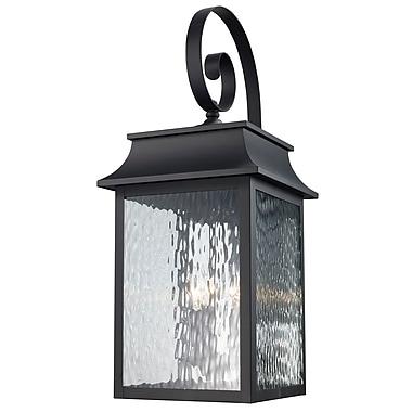 Alcott Hill Ericsson 3 Light Outdoor Wall Lantern; Black
