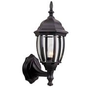 Charlton Home Oakhill 1-Light Metal Outdoor Sconce; Matte Black