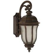 Charlton Home Oakhill Bronze Glass 1-Light Outdoor Wall Lantern