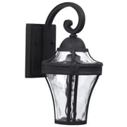 Charlton Home Oakhill Traditional Clear 1-Light Outdoor Wall Lantern; Matte Black