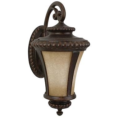 Charlton Home Oakhill Bronze 1-Light Outdoor Wall Lantern; Large