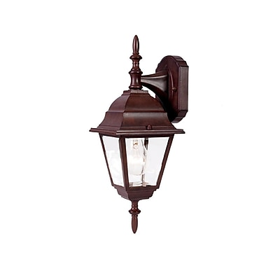 Charlton Home Ledbetter Modern 1-Light Outdoor Wall Lantern; Burled Walnut