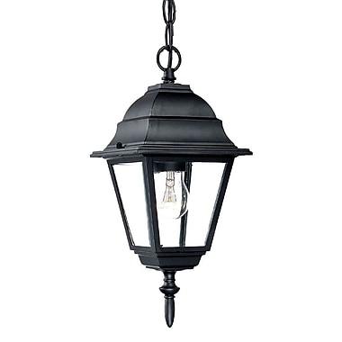 Charlton Home Ledbetter 1-Light Outdoor Clear Beveled Glass Hanging Lantern; Matte Black