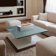 Ebern Designs Jennings Bio Ethanol Fireplace Burner Insert