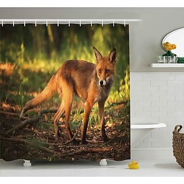 Ebern Designs Ike Wild Cute Fox Shower Curtain; 69'' W x 84'' L