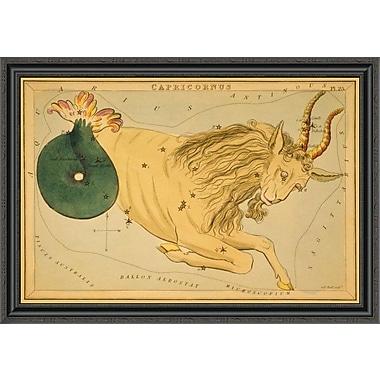 East Urban Home 'Capricorn; 1825' Framed Print; 16'' H x 40'' W x 1.5'' D