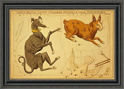 East Urban Home 'Canis Major; Lepus; Columba Noachi & Cela Sculptoris; 1825' Framed Print