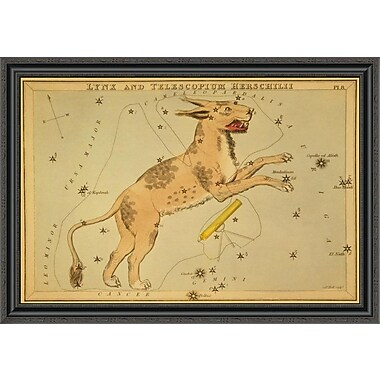 East Urban Home 'Lynx and Telescopium Herschilii; 1825' Framed Print; 22'' H x 40'' W x 1.5'' D