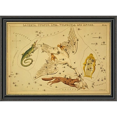 East Urban Home 'Lacerta; Cygnus; Lyra; Vulpecula and Anser; 1825' Framed Print