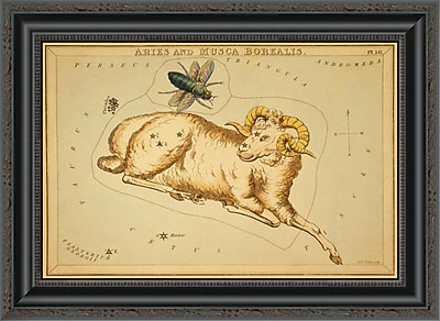 East Urban Home 'Aries and Musca Borealis; 1825' Framed Print; 20'' H x 22'' W x 1.5'' D