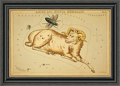 East Urban Home 'Aries and Musca Borealis; 1825' Framed Print; 24'' H x 28'' W x 1.5'' D