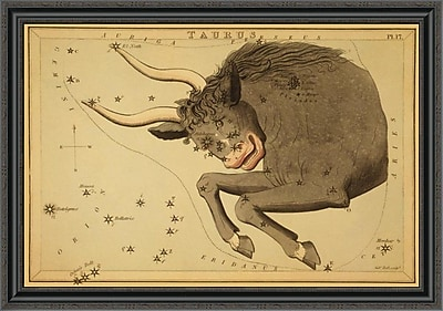 East Urban Home 'Taurus the Bull; 1825' Framed Print; 16'' H x 40'' W x 1.5'' D